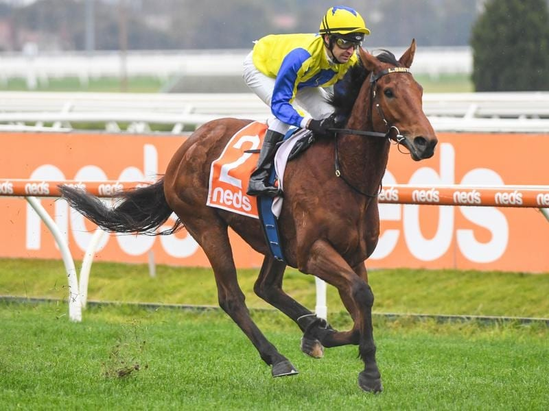 Mystery Shot cantered to an easy win at Caulfield.