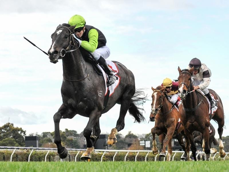 Persan chases fourth-straight city win at Caulfield