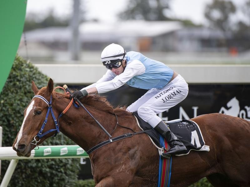 Mishani Fraudster claims wet track victory at Doomben