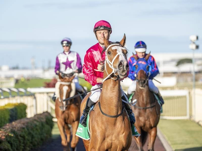 Gold Coast jockey Luke Dittman