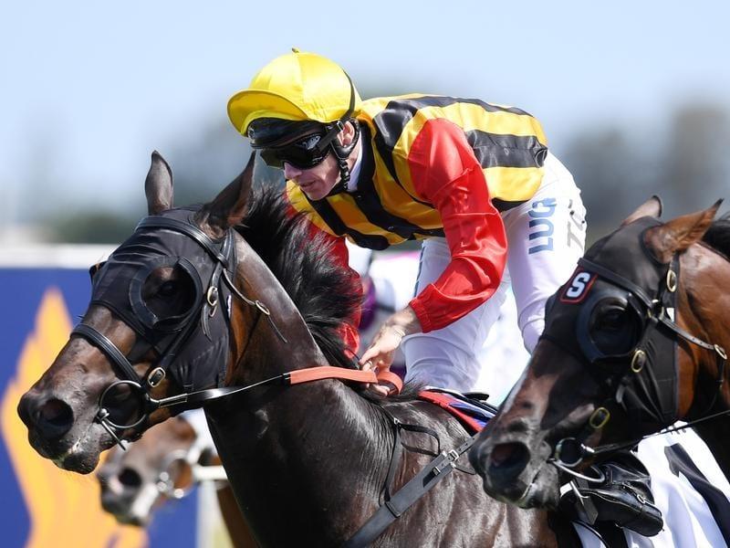 Jockey Damian Browne rides Boomsara