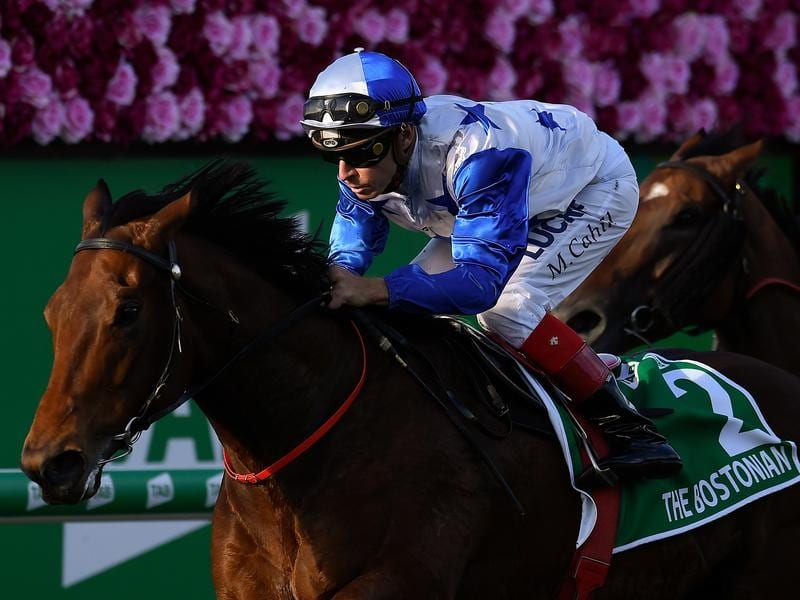 New Zealand gelding The Bostonian aimed at Sydney spring campaign