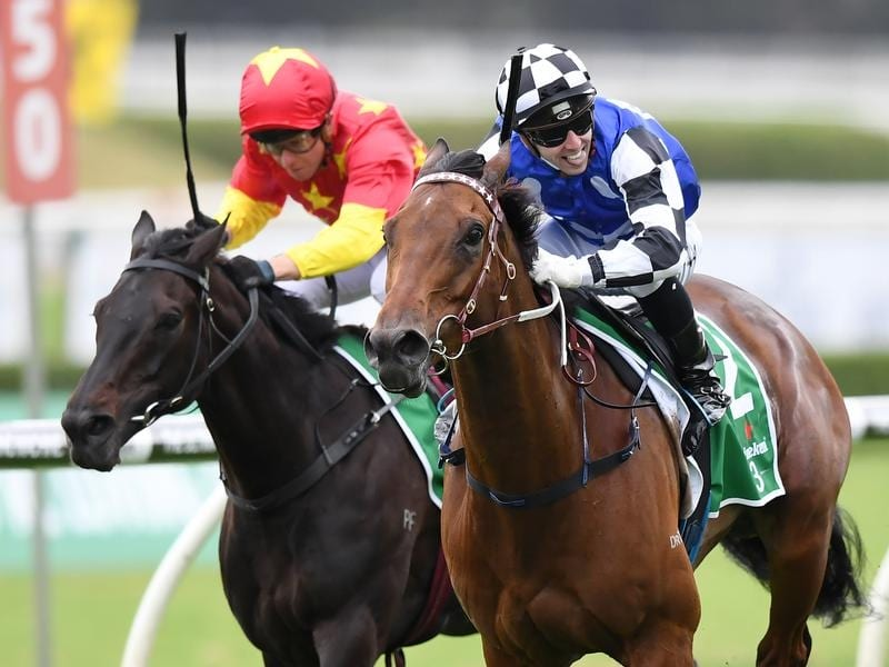 Big Duke and Sixties Groove target Grafton Cup for trainer Kris Lees
