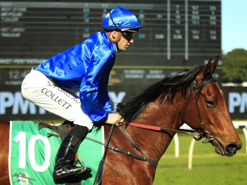 Tailleur returns to scale after winning at Randwick.