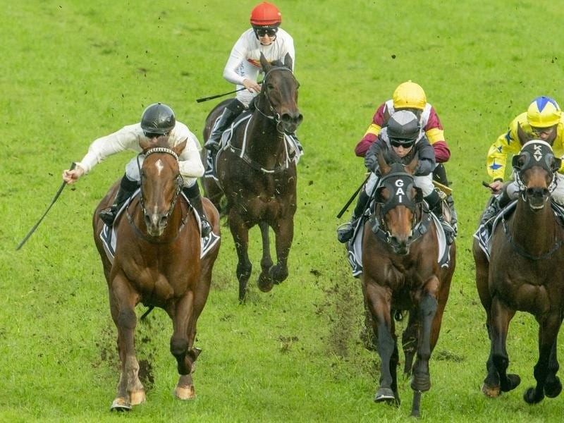 Noble Boy (left) takes out the Listed Winter Stakes.