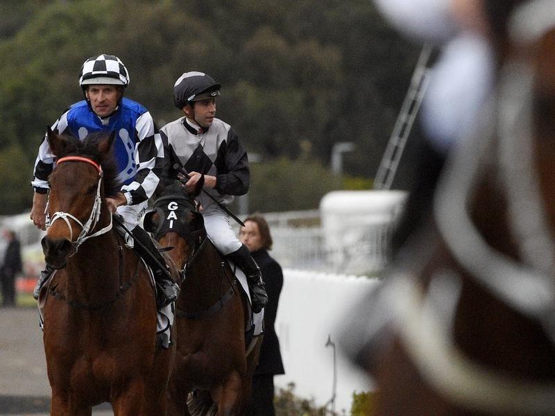 Hugh Bowman guides Mugatoo to victory at Rosehill