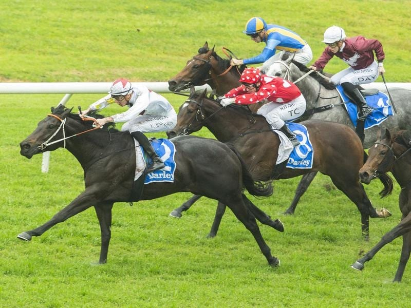 North Pacific wins stylishly at Rosehill.