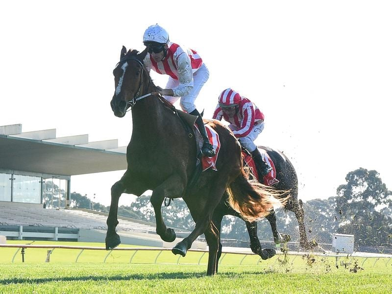 Toyetic wins at Sandown
