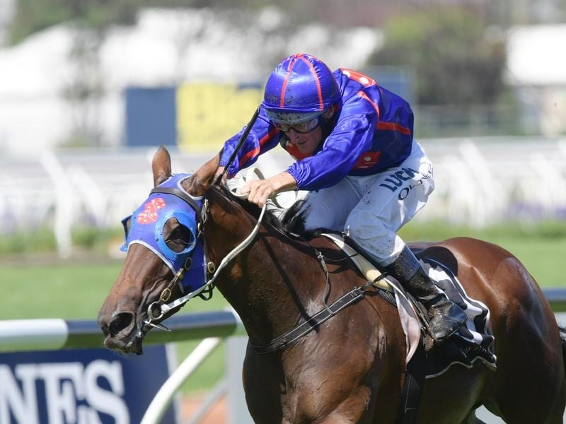 Krone will contest the Glasshouse Handicap at the Sunshine Coast.
