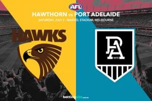 Hawks Power AFL Rd 16 betting tips